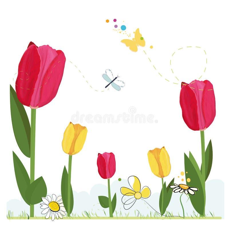 Hand getrokken rode, gele realistische tulpen met madeliefjes en vlinder De kaart van de groet De banner van de de achtergrond le stock illustratie