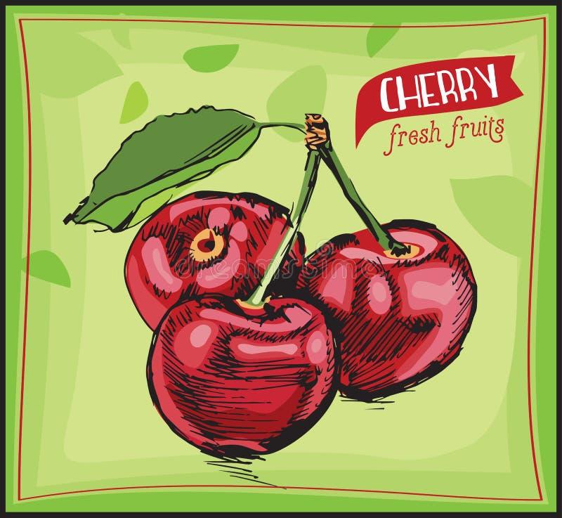 Hand getrokken schetskers Vers fruit uitstekende banner royalty-vrije illustratie