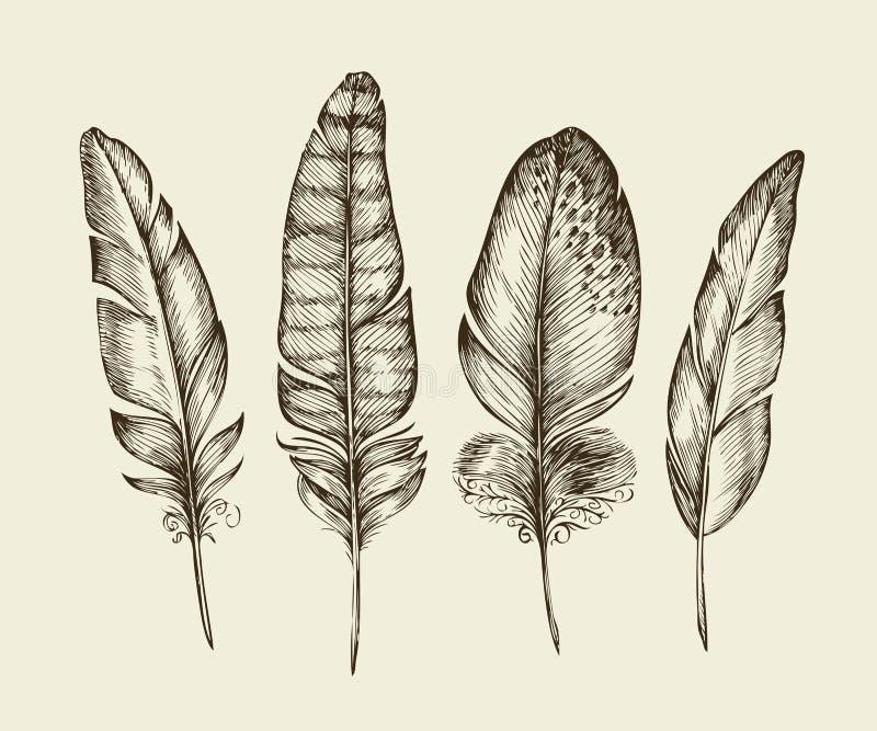Hand getrokken uitstekende vogelveren Schets het schrijven veer Vector illustratie stock illustratie