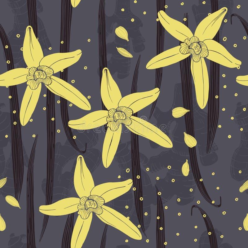 Hand getrokken vanille De peulen en de bloemen vector illustratie