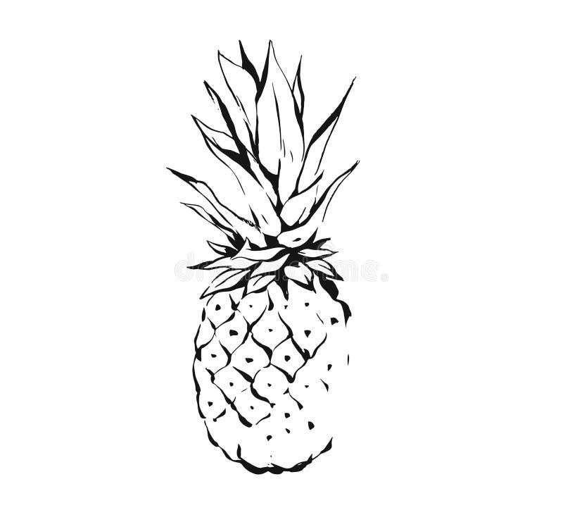 Hand getrokken vector abstract exotisch tropisch van de het fruitananas van de inkt grafisch die tekening de illustratiepictogram stock illustratie