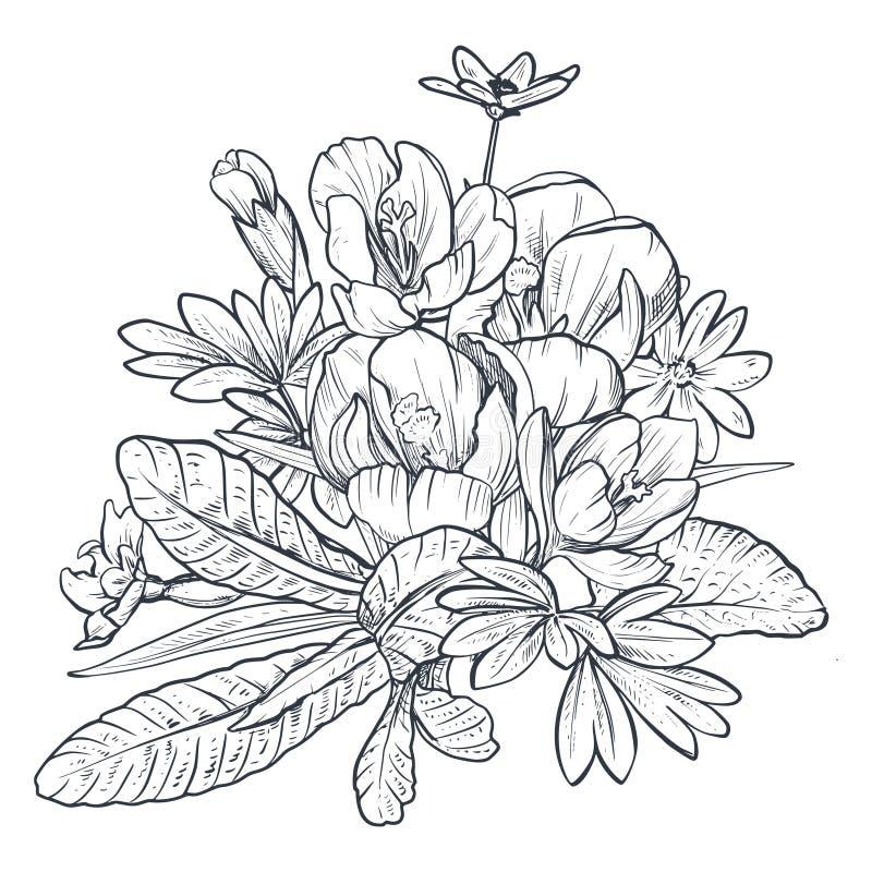 Hand getrokken vectorboeket van de lentebloemen en bladeren op witte achtergrond vector illustratie