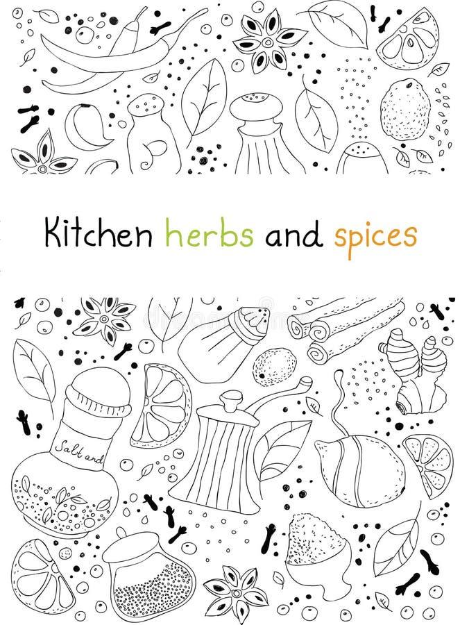 De kruiden en de kruidenkrabbelachtergrond van de keuken vector illustratie
