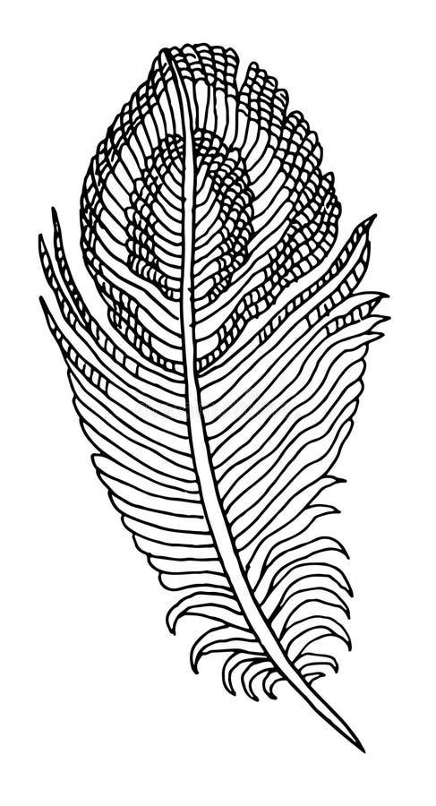 Hand Getrokken Veer stock illustratie