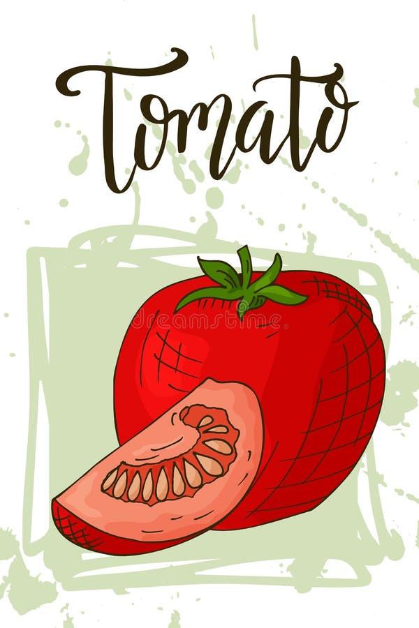 Hand getrokken vegetarische illustratie Het element van de Isotaledtomaat Vectorschets voor kaart of affiche royalty-vrije illustratie