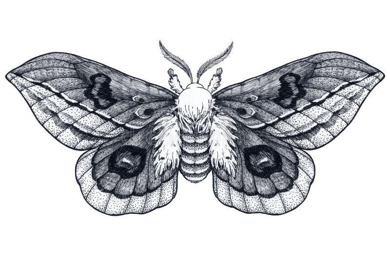 Hand getrokken vlindertatoegering Dotworktatoegering Mooie Mot Automeris Randa Mystiek symbool van vrijheid, schoonheid, het leve vector illustratie