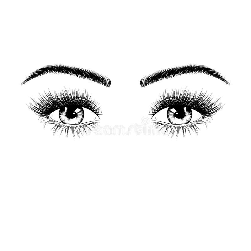 Hand getrokken vrouwelijk ogensilhouet Ogen met wimpers en wenkbrauwen Vector illustratie die op witte achtergrond wordt geïsolee royalty-vrije illustratie
