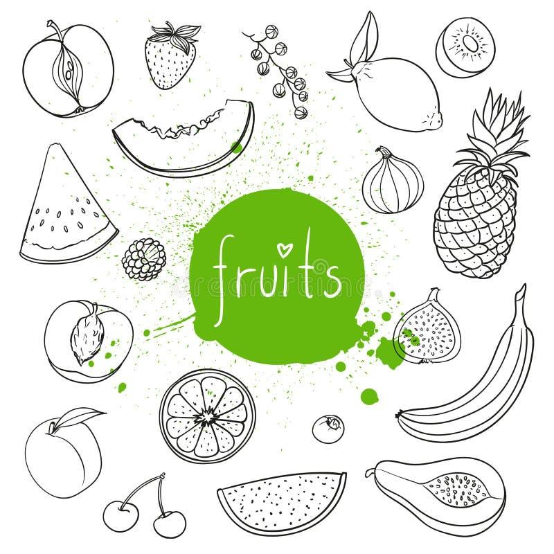 Hand getrokken vruchten stock illustratie