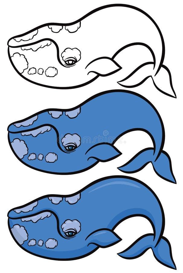 Hand getrokken walvis stock illustratie