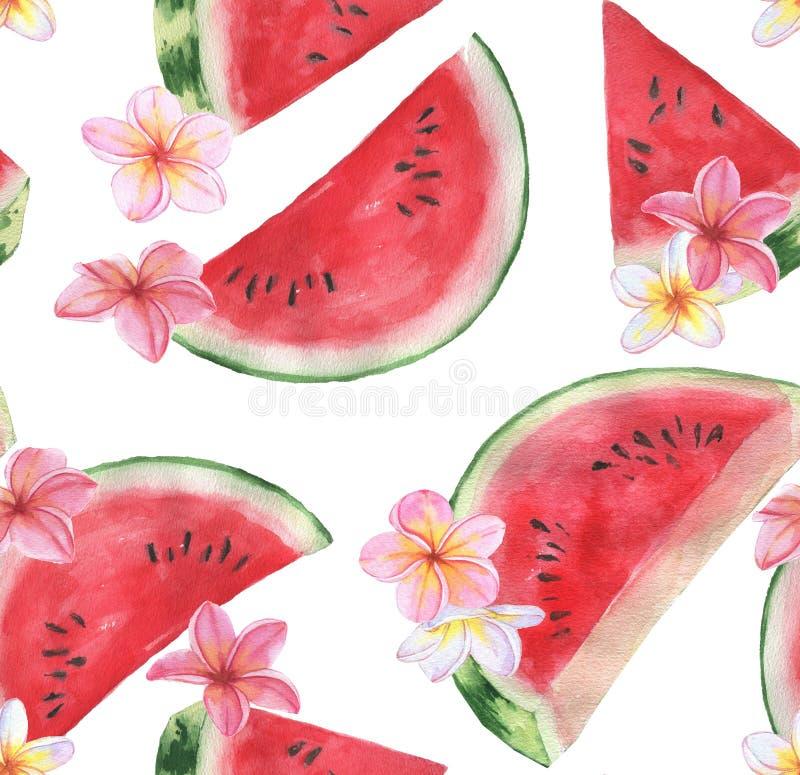 Hand getrokken waterverf naadloos patroon met verse watermeloen en uitheemse gewassen stock fotografie