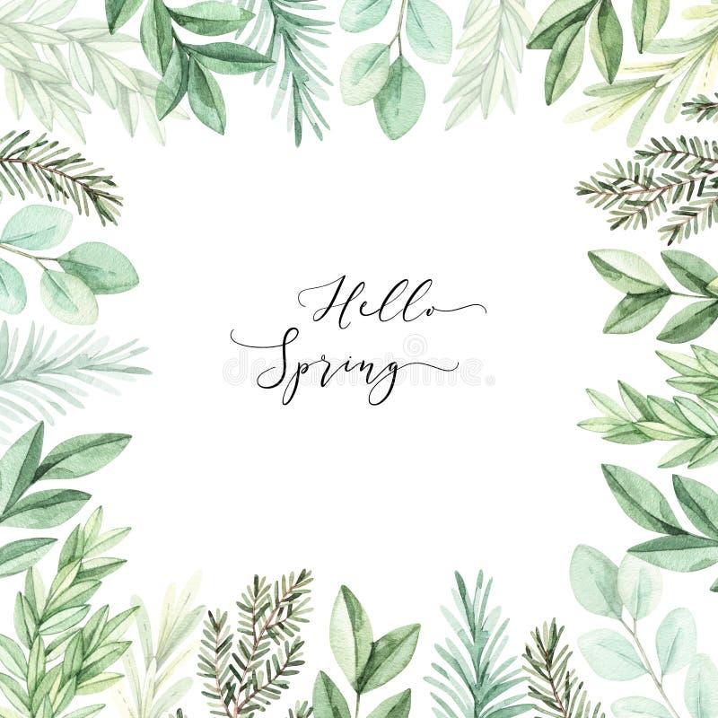 Hand getrokken waterverfillustratie Botanisch kader met eucalyptus, takken en bladeren groen De grafische Elementen van het Ontwe royalty-vrije illustratie