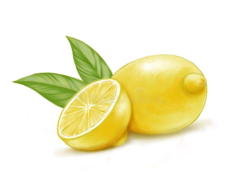 Hand getrokken waterverfillustratie van geïsoleerde gele citroen en bladeren royalty-vrije stock afbeelding