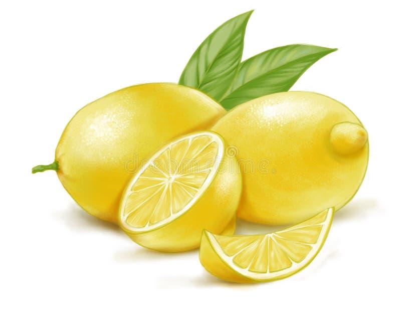 Hand getrokken waterverfillustratie van geïsoleerde gele citroen en bladeren stock foto