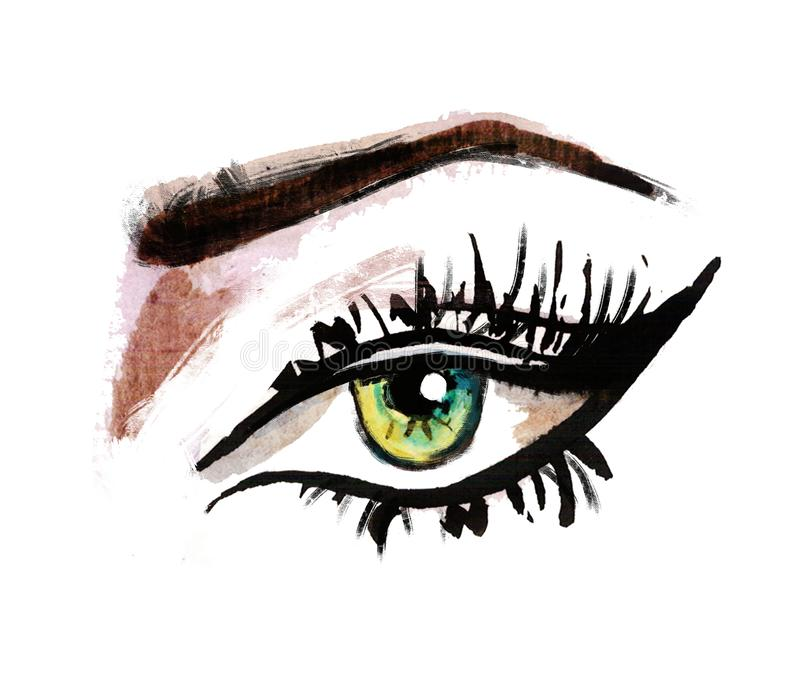 Hand getrokken waterverfogen luxueus oog met volkomen gestalte gegeven wenkbrauwen en volledige zwepen stock illustratie