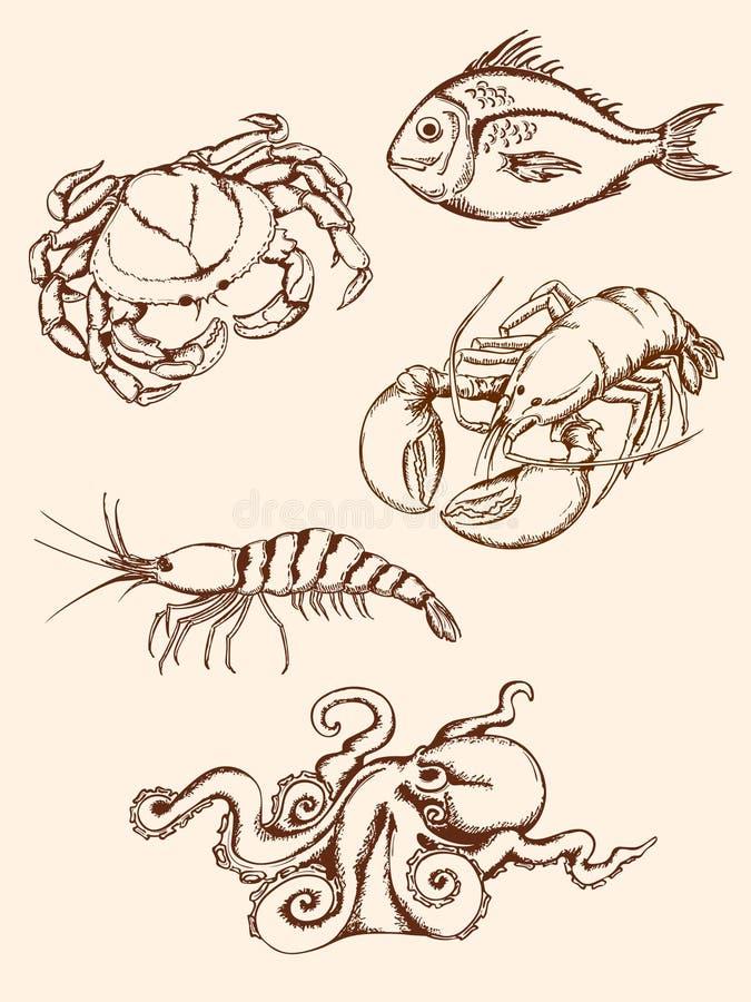 Hand getrokken zeevruchtenpictogrammen stock illustratie