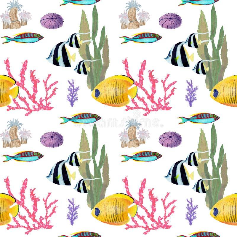Hand gezeichnet in Aquarellseeweltnatürliches Element Korallen fischen seemless Muster des Riffs auf weißem Hintergrund lizenzfreie abbildung