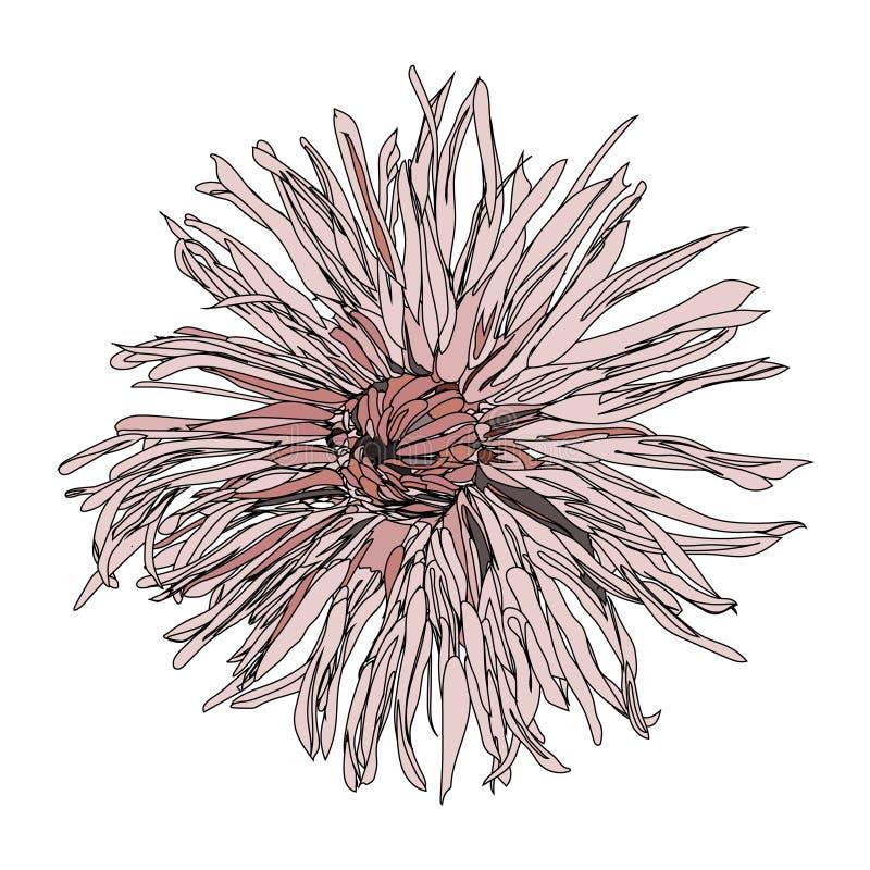 Hand gezeichnete abstrakte Blume lizenzfreies stockfoto