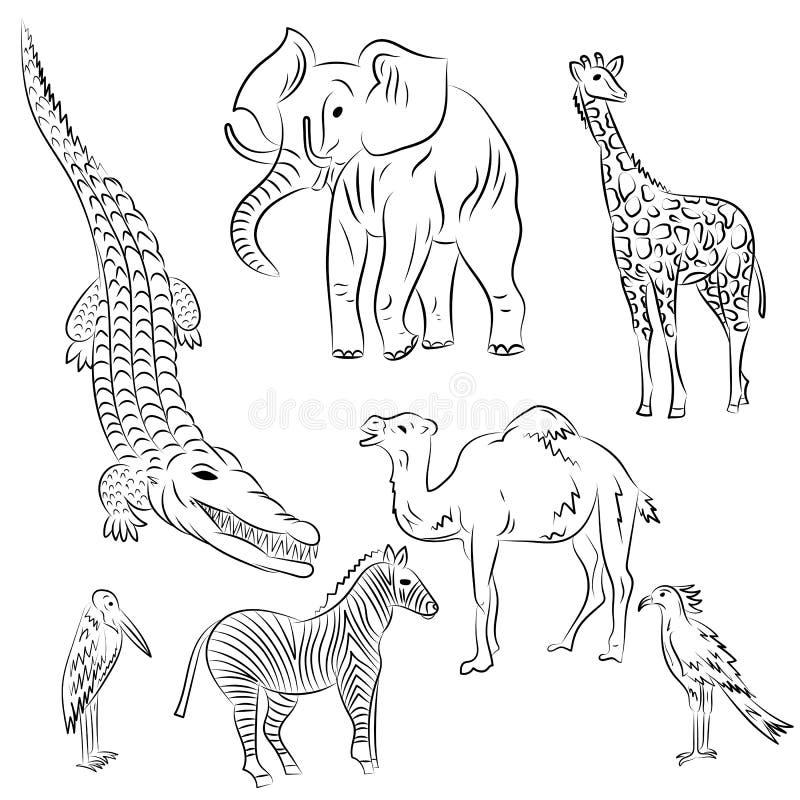 Hand gezeichnete afrikanische Tiere und Vögel Kritzeln Sie Zeichnungen des Elefanten, des Zebras, der Giraffe, des Kamels, des Ma stock abbildung