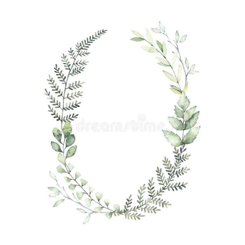 Hand gezeichnete Aquarellillustration Botanischer Kranz des grünen Brs lizenzfreie abbildung