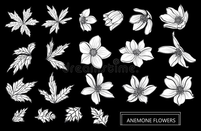 Hand gezeichnete Blumendekorationen stock abbildung