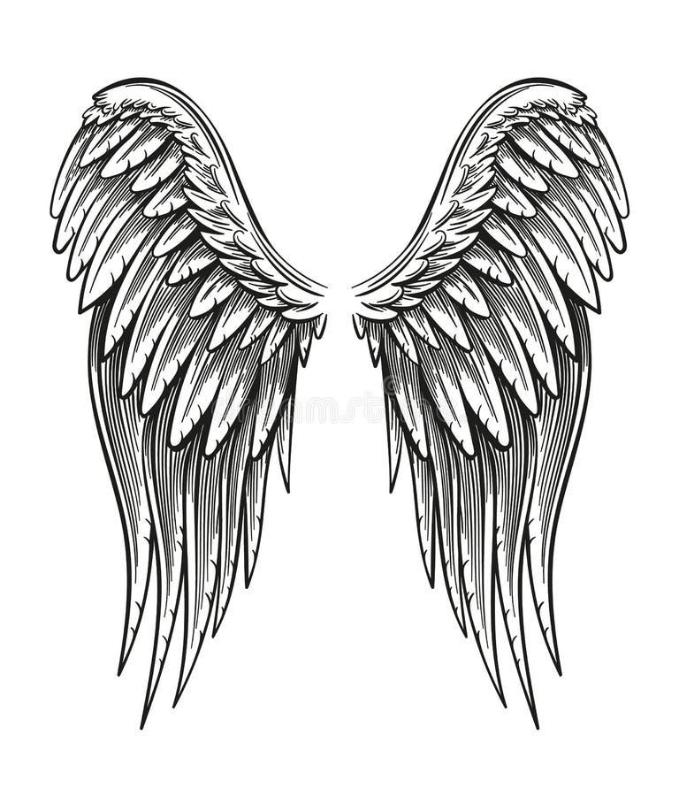 Hand gezeichnete Flügel stock abbildung