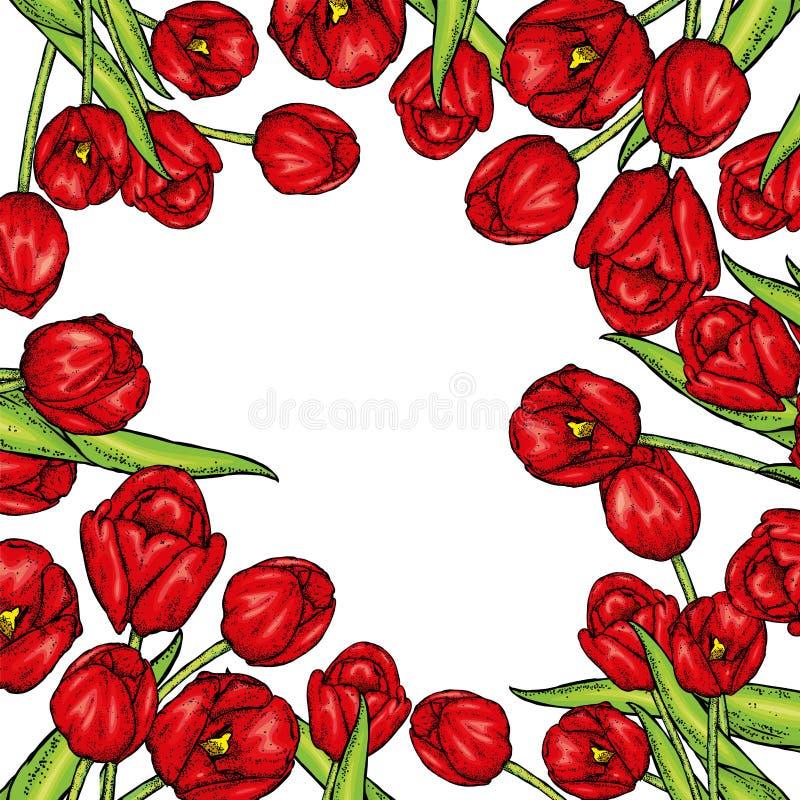 Hand gezeichnete Frühlingsblumenfahne Farbige Tulpe Willkommener Frühling Hand gezeichnete Abbildung vektor abbildung