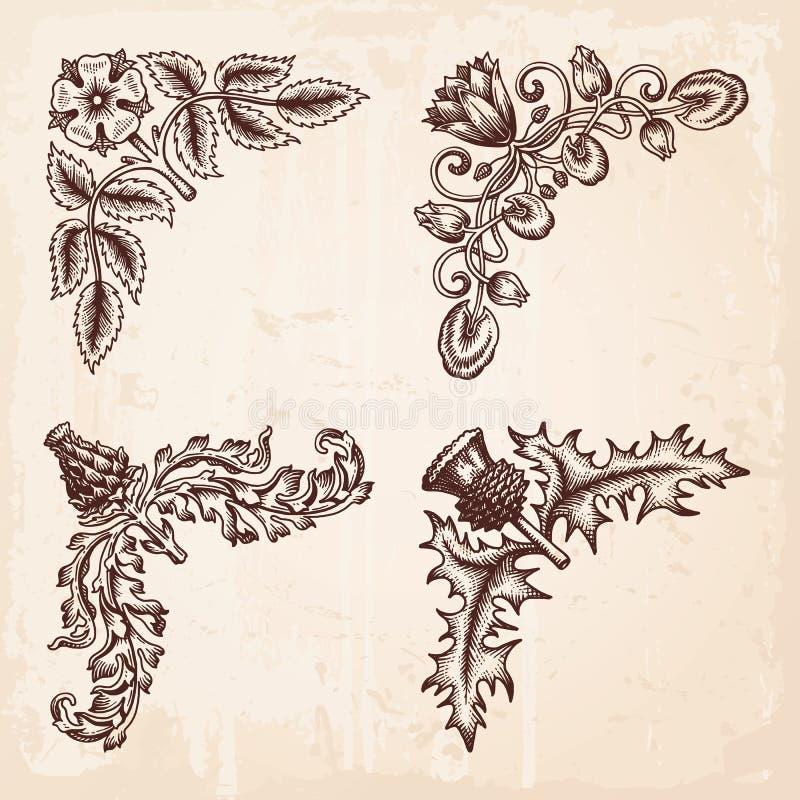 Hand gezeichnete Gestaltungselement-Ecken-Weinlese stock abbildung