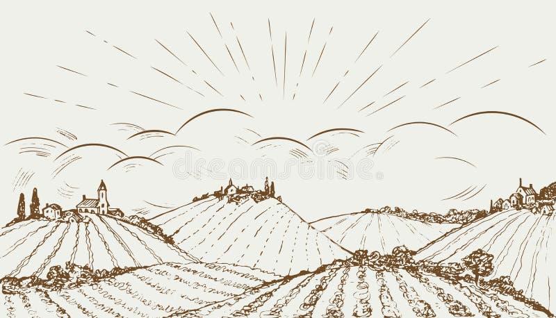 Hand gezeichnete panoramische breite Landschaft des ländlichen Feldes Weinlesevektorillustration lizenzfreie abbildung