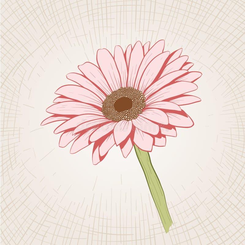 hand gezeichnete rosa blume vektor abbildung illustration von g nsebl mchen ge tzt 58939821. Black Bedroom Furniture Sets. Home Design Ideas