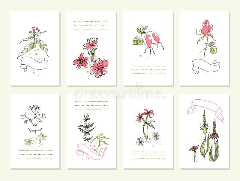 Download Hand Gezeichnete Sammlung Romantische Blumeneinladungen Hochzeit,  Geburtstag, Tag Des Valentinsgrußes S Vektor Abbildung