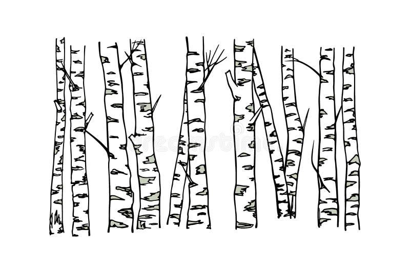 Hand gezeichnete Suppengrünstämme lizenzfreie abbildung