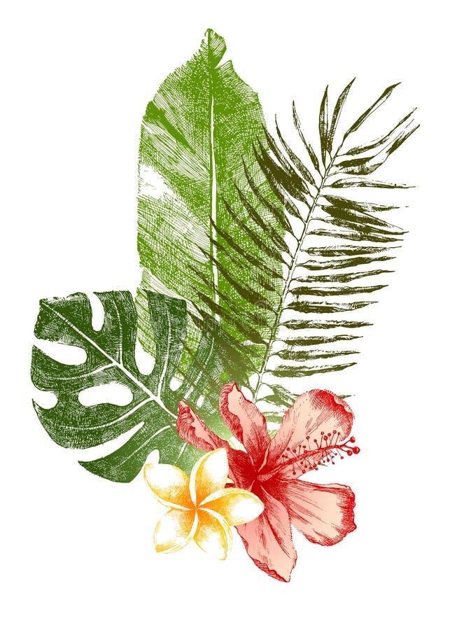 Hand gezeichnete tropische Blätter und Blumen vektor abbildung