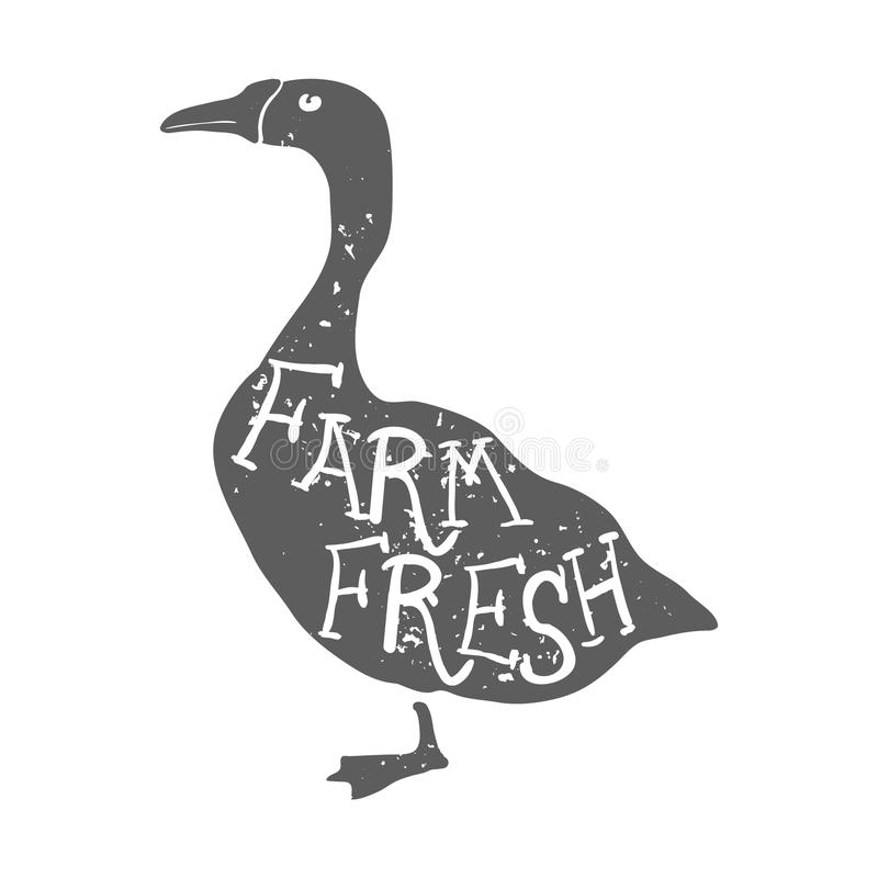 Hand gezeichnete Vieh-Gans Bauernhof-neue Beschriftung Vektor stock abbildung