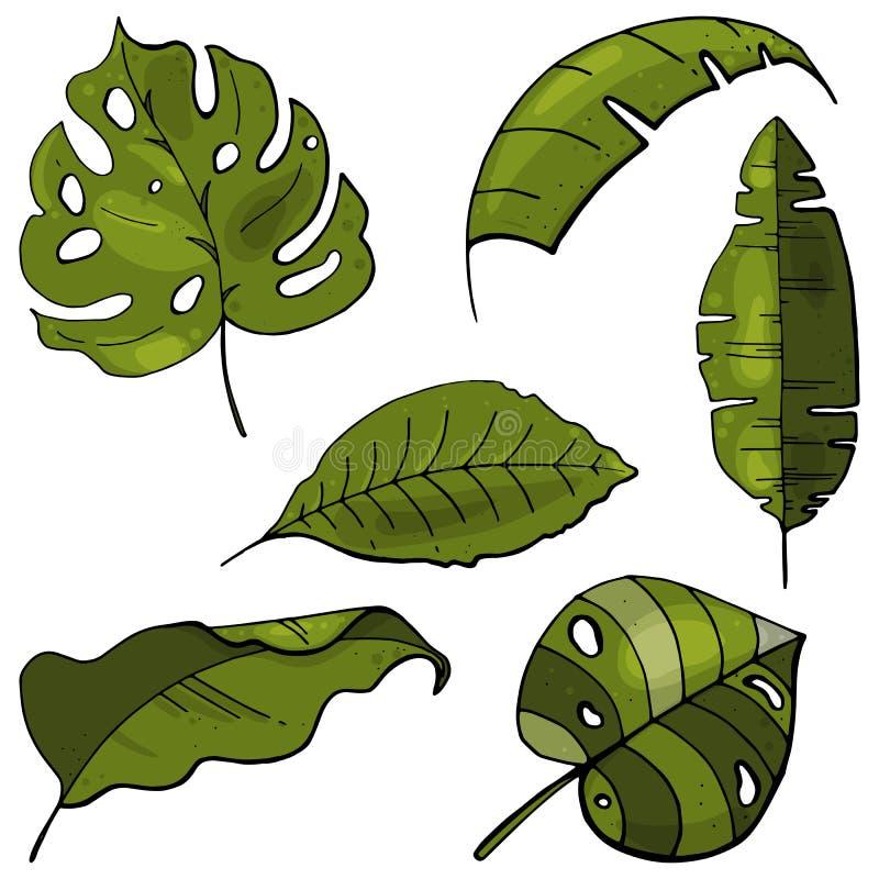 Hand gezeichneter botanischer Satz Tropische Blätter Lokalisiert auf weißem BAC stock abbildung