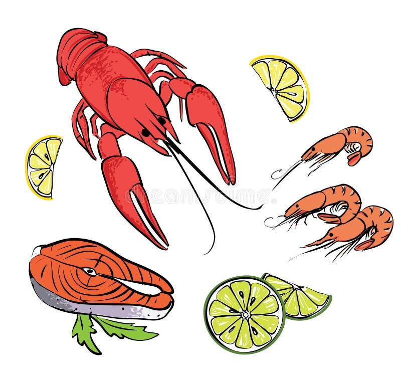 Hand gezeichneter Meeresfruchtsatz lizenzfreie abbildung