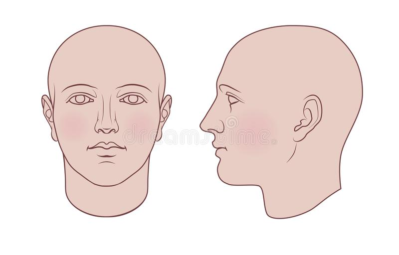 Hand gezeichneter menschlicher Kopf in 2 Ansichten, farbige Variante stock abbildung