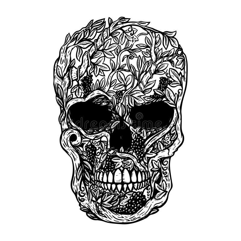 Hand gezeichneter menschlicher Schädel hergestellt vom Weinstock Gestaltungselement für Plakat, T-Shirt vektor abbildung