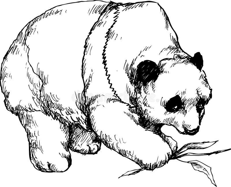 Hand gezeichneter netter Panda lizenzfreie abbildung