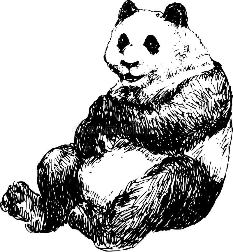 Hand gezeichneter Panda vektor abbildung