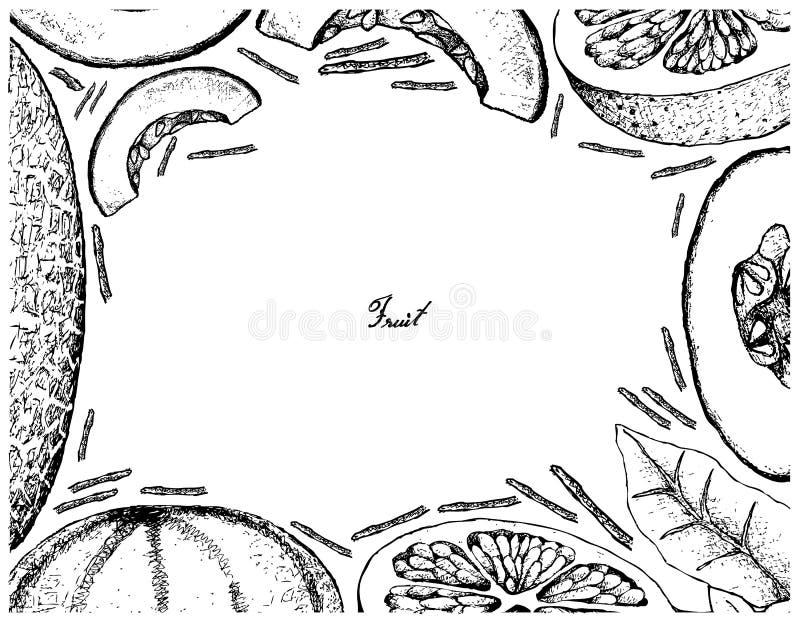 Hand gezeichneter Rahmen der Kantalupe und der Pampelmuse vektor abbildung