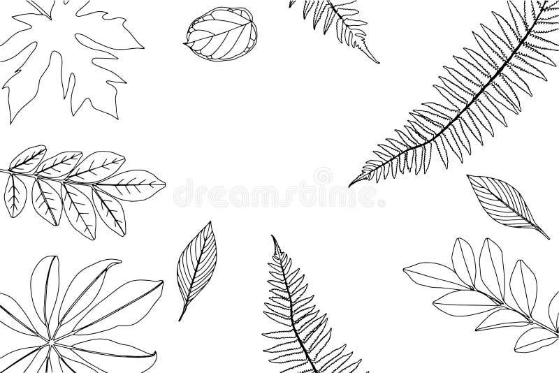 Hand gezeichneter Rahmen von Blättern und von Anlagen Auch im corel abgehobenen Betrag stockbild