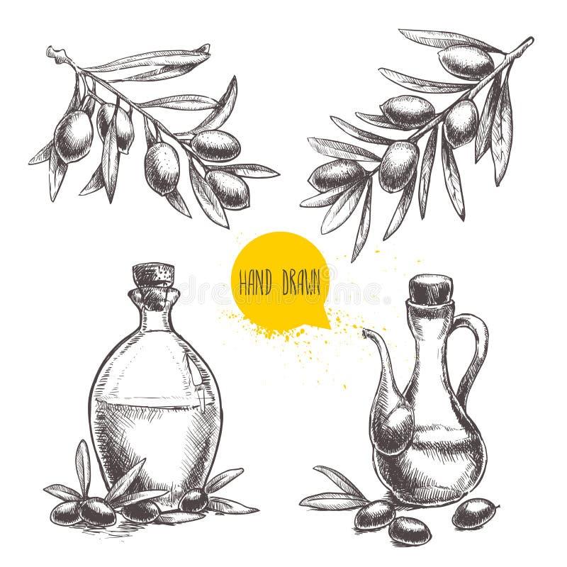 Hand gezeichneter Satz Ölzweige mit Oliven und Flaschen mit Olivenöl vektor abbildung