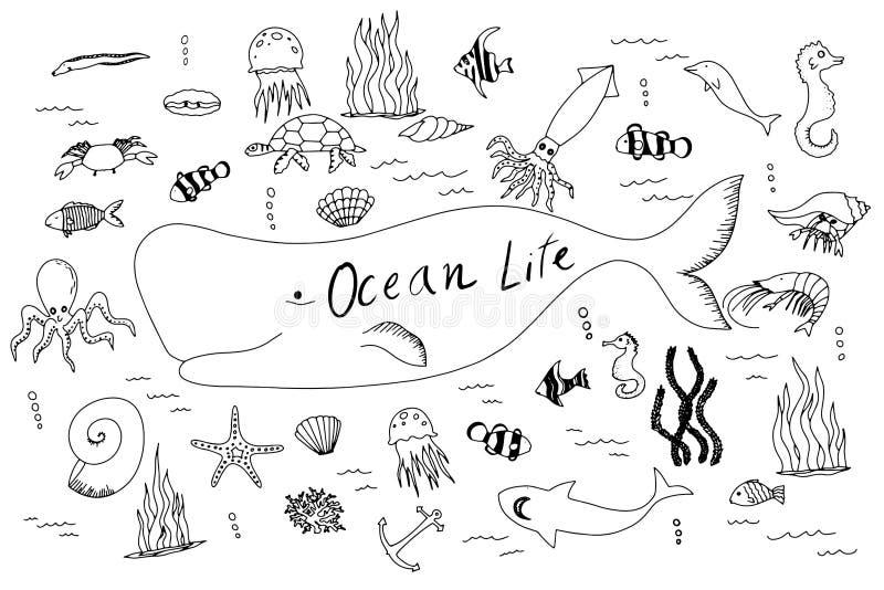 Hand gezeichneter Satz mit dem Ozeanleben lizenzfreie stockfotografie