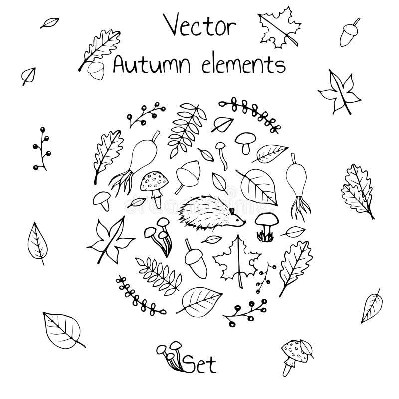 Hand gezeichneter Satz Vektorherbstelemente Schließt Laub, Beeren, Pilze und ein Igeles mit ein lizenzfreie abbildung