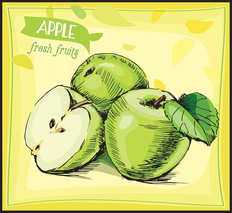 Hand gezeichneter Skizzenapfel Frische Frucht stockbild