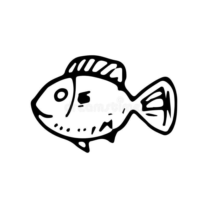 Hand gezeichnetes Fischgekritzel Skizzenartikone Eingelassenes Genua, Italien Getrennt auf weißem Hintergrund Flaches Design Auch vektor abbildung