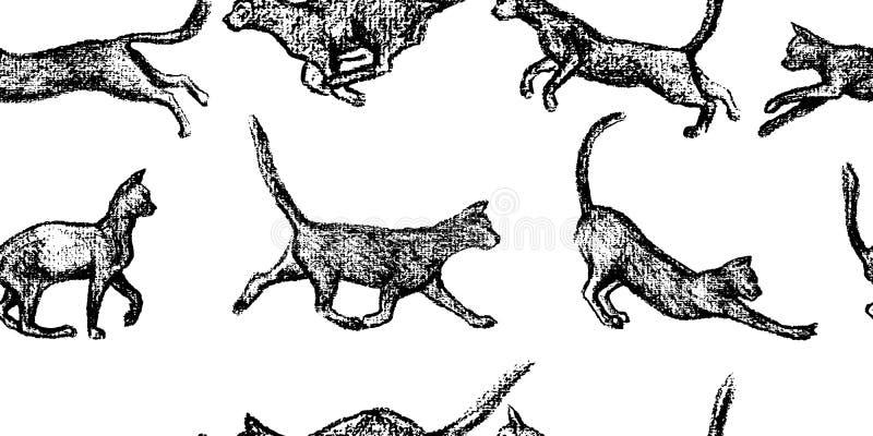 Download Hand Gezeichnetes Katzenmuster Vektor Abbildung - Illustration von dekoration, playful: 96931398