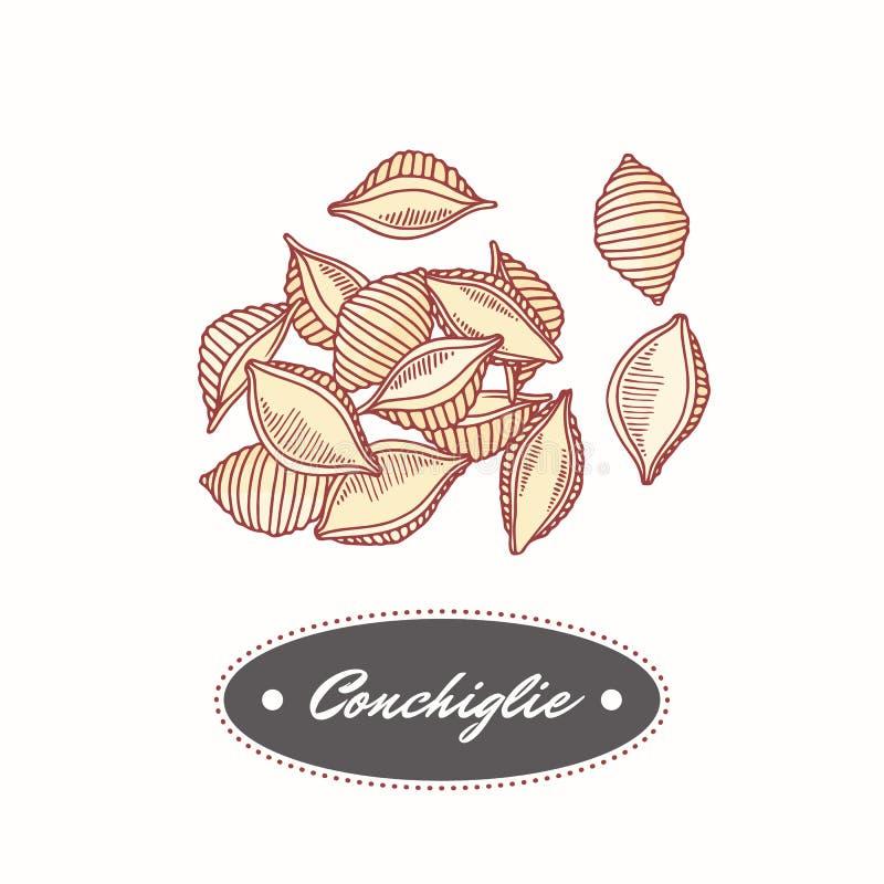 Hand gezeichnetes Teigwaren conchiglie lokalisiert auf Weiß Element für Restaurant- oder Lebensmittelverpackungsdesign lizenzfreie abbildung