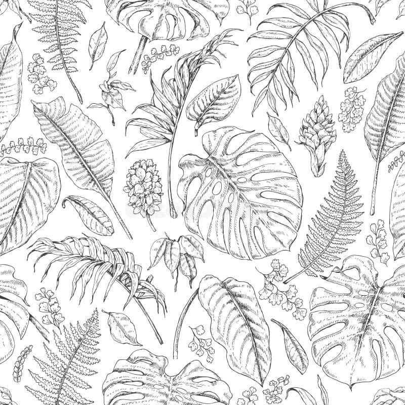 Hand gezeichnetes tropische Betriebsmuster lizenzfreie abbildung