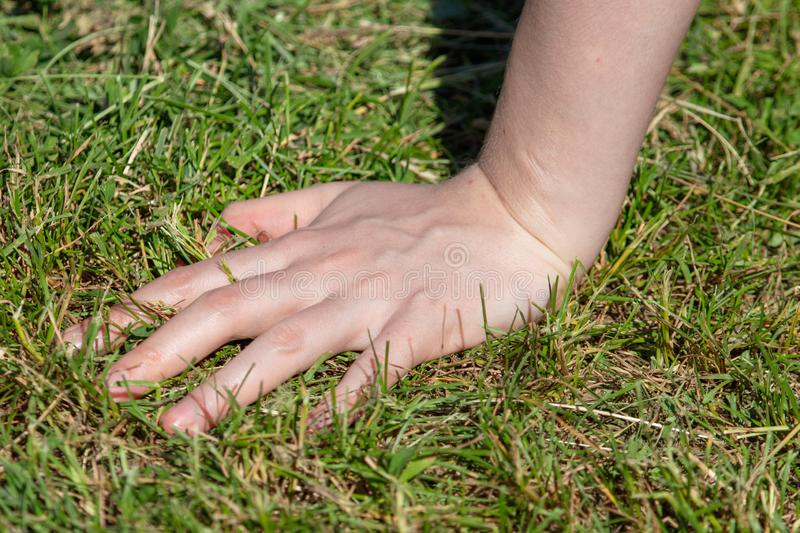 Hand on the girl on the grass royalty free stock images